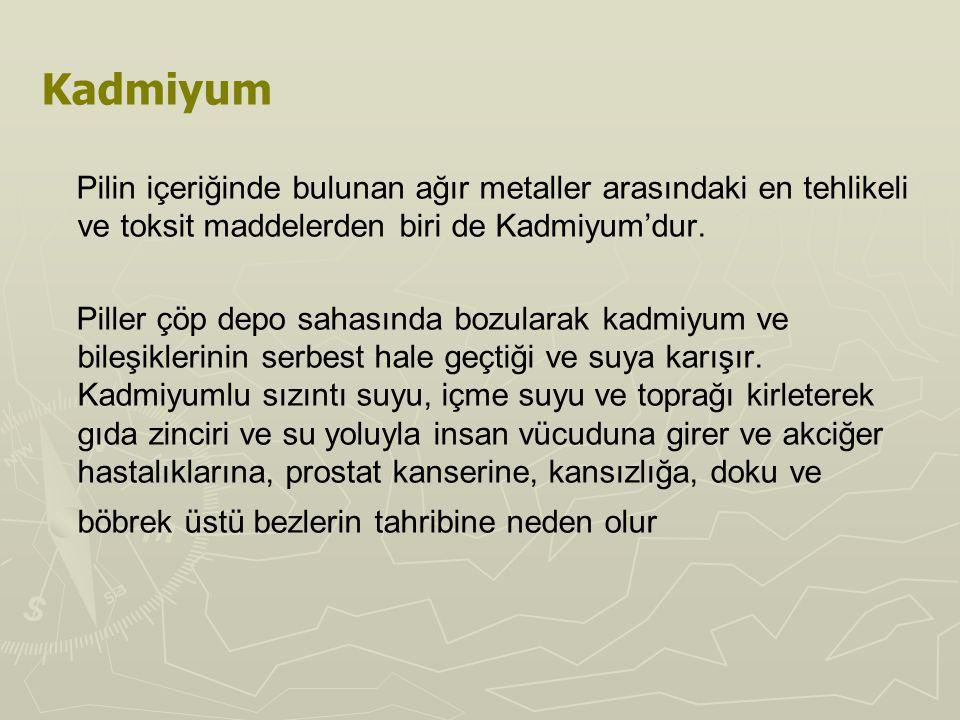 Kadmiyum Pilin içeriğinde bulunan ağır metaller arasındaki en tehlikeli ve toksit maddelerden biri de Kadmiyum'dur.