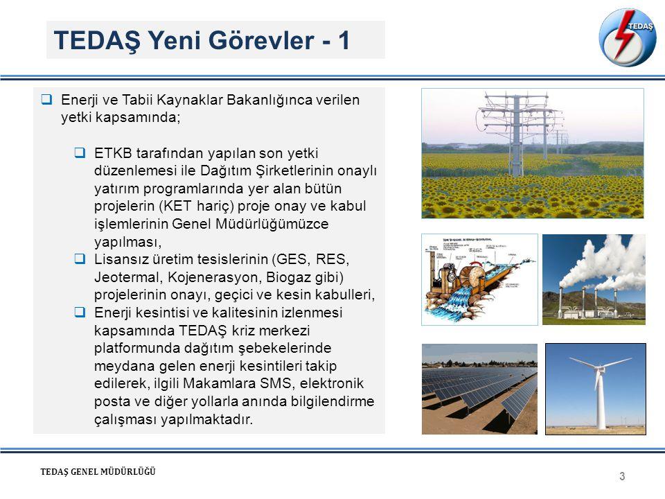TEDAŞ Yeni Görevler - 1 Enerji ve Tabii Kaynaklar Bakanlığınca verilen yetki kapsamında;