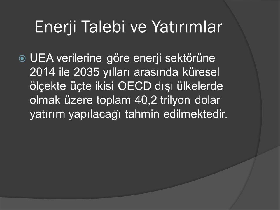 Enerji Talebi ve Yatırımlar