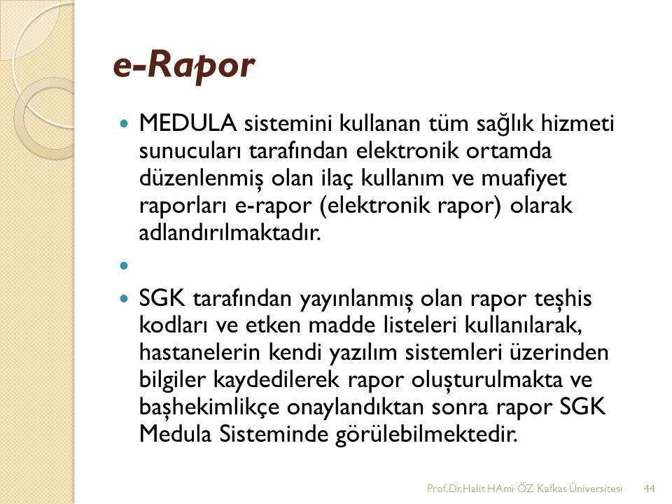 e-Rapor