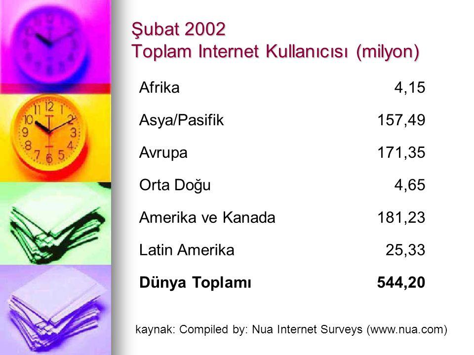 Şubat 2002 Toplam Internet Kullanıcısı (milyon)