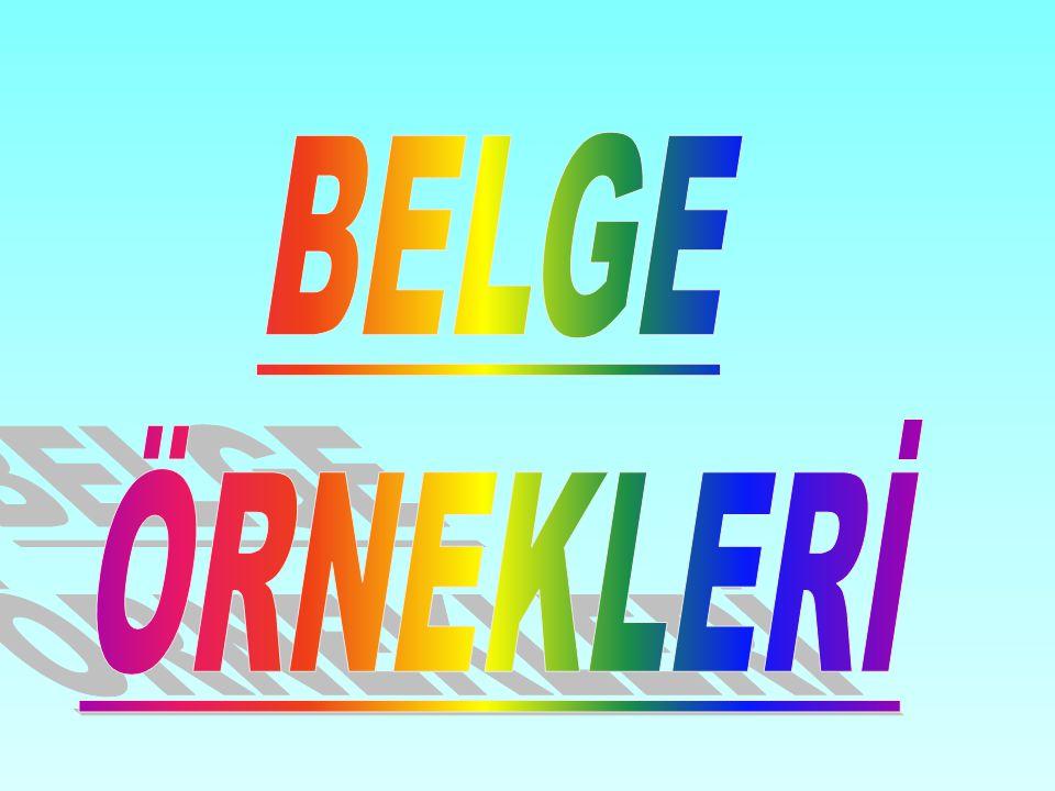 BELGE ÖRNEKLERİ