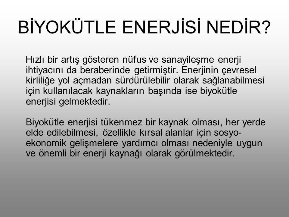 BİYOKÜTLE ENERJİSİ NEDİR