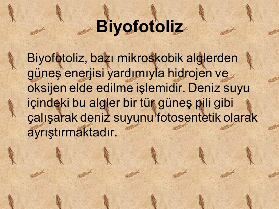 Biyofotoliz