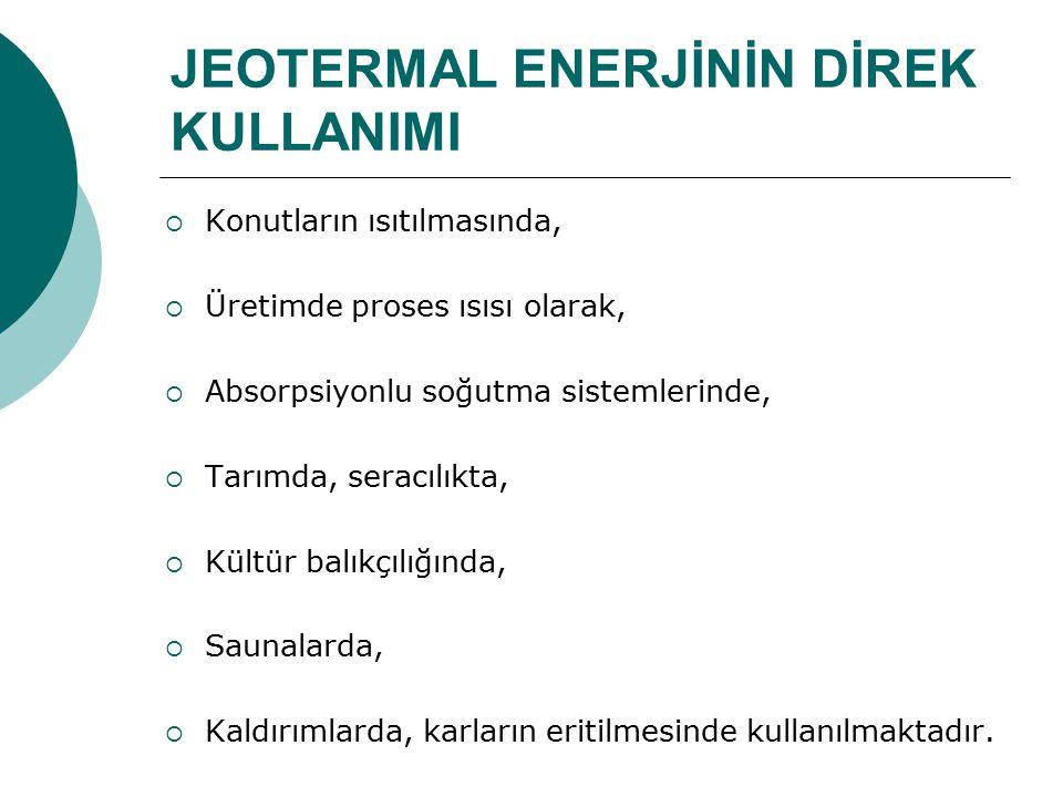 JEOTERMAL ENERJİNİN DİREK KULLANIMI