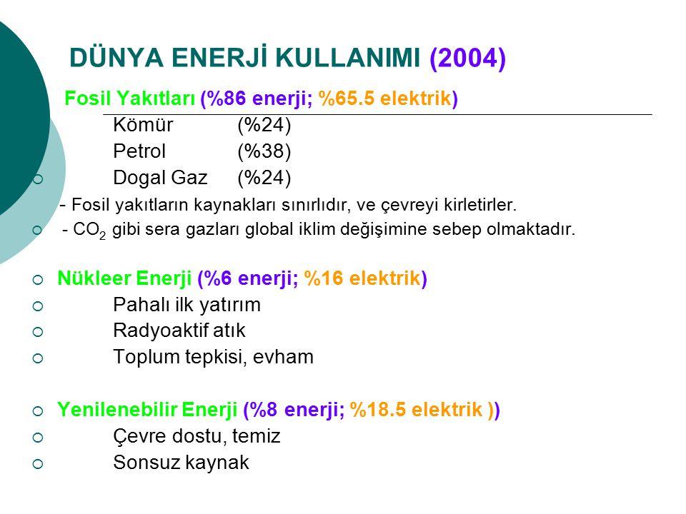 DÜNYA ENERJİ KULLANIMI (2004)
