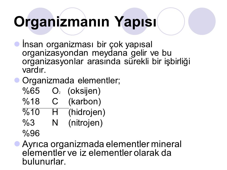 Organizmanın Yapısı İnsan organizması bir çok yapısal organizasyondan meydana gelir ve bu organizasyonlar arasında sürekli bir işbirliği vardır.