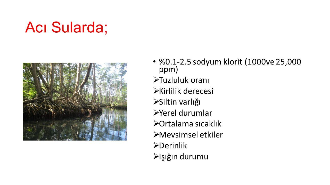 Acı Sularda; %0.1-2.5 sodyum klorit (1000ve 25,000 ppm) Tuzluluk oranı