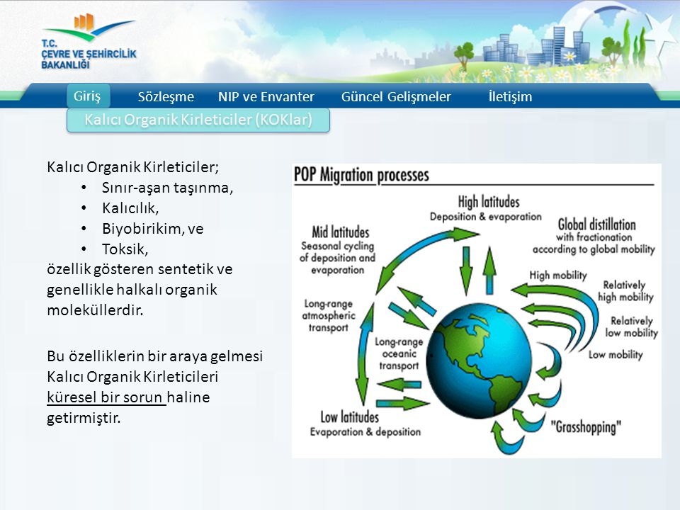 Kalıcı Organik Kirleticiler (KOKlar)