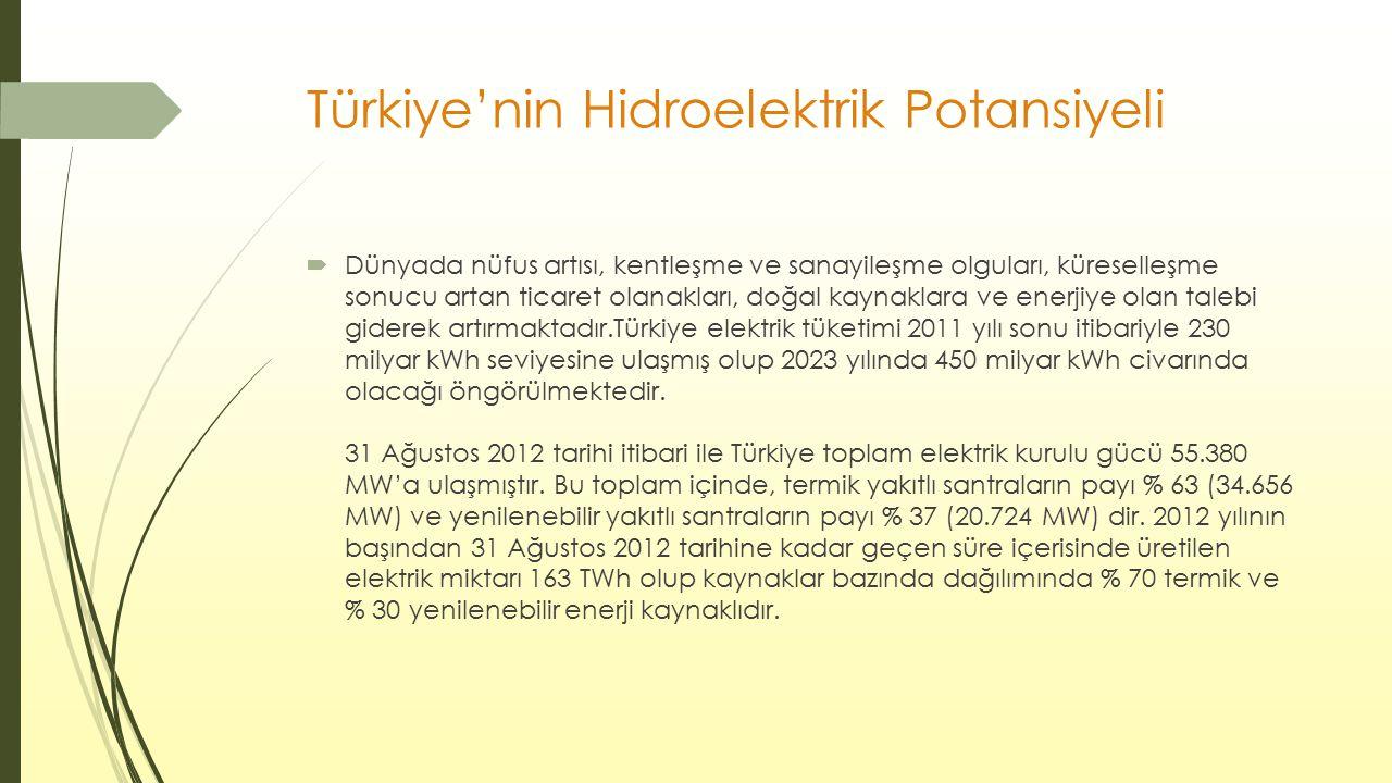 Türkiye'nin Hidroelektrik Potansiyeli