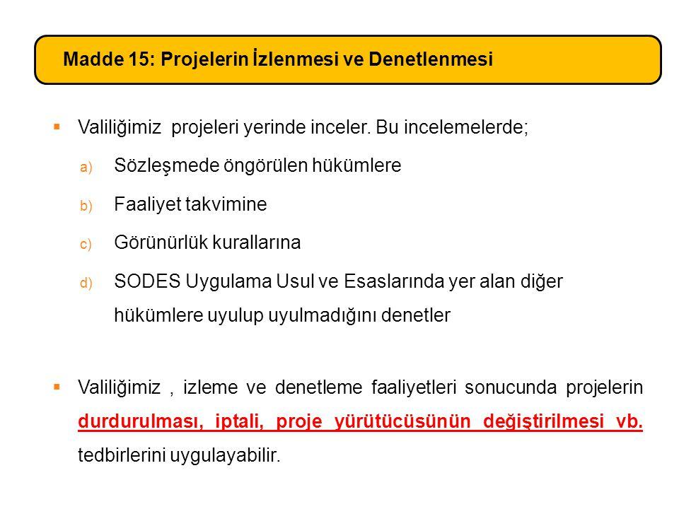Madde 15: Projelerin İzlenmesi ve Denetlenmesi