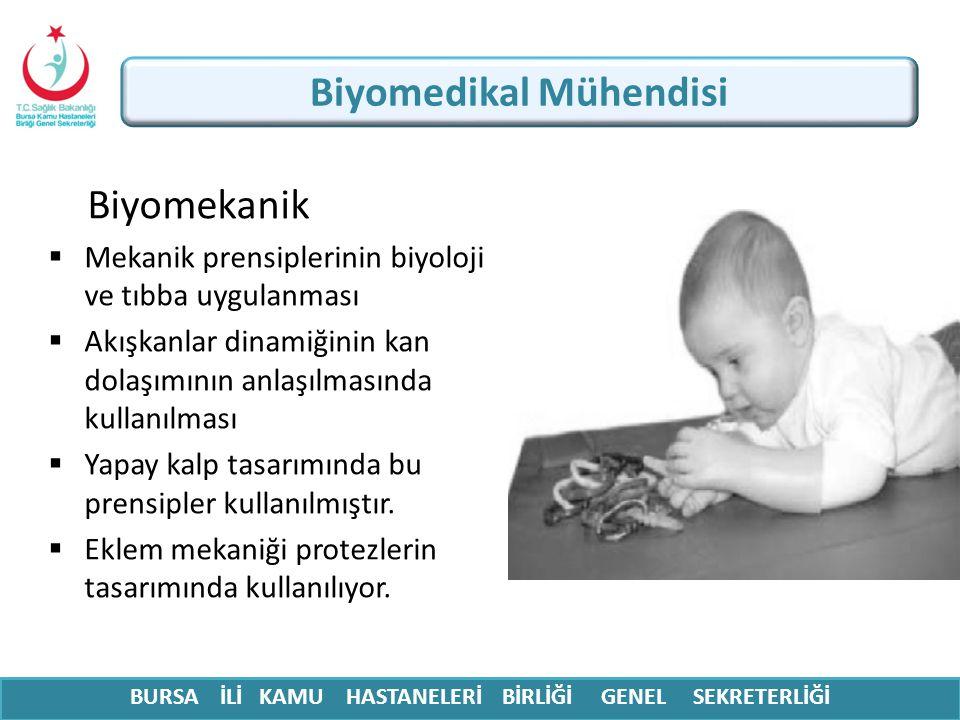 Biyomedikal Mühendisi