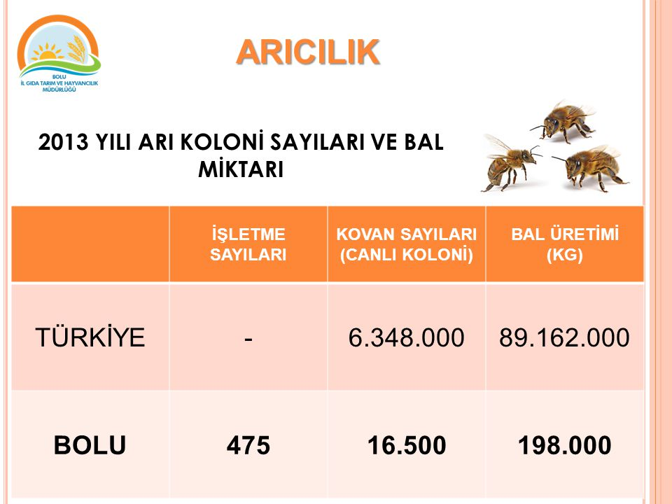 ARICILIK TÜRKİYE - 6.348.000 89.162.000 BOLU 475 16.500 198.000