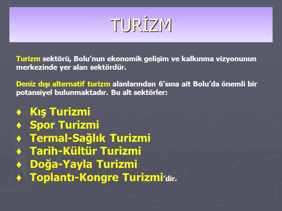 TURİZM ♦ Kış Turizmi ♦ Spor Turizmi ♦ Termal-Sağlık Turizmi