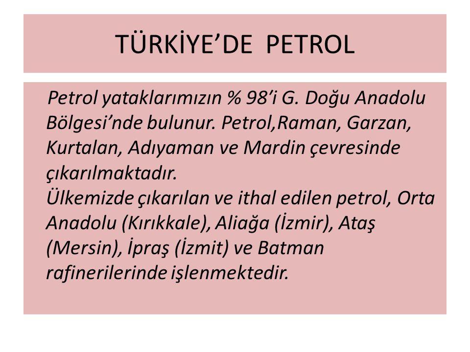 TÜRKİYE'DE PETROL