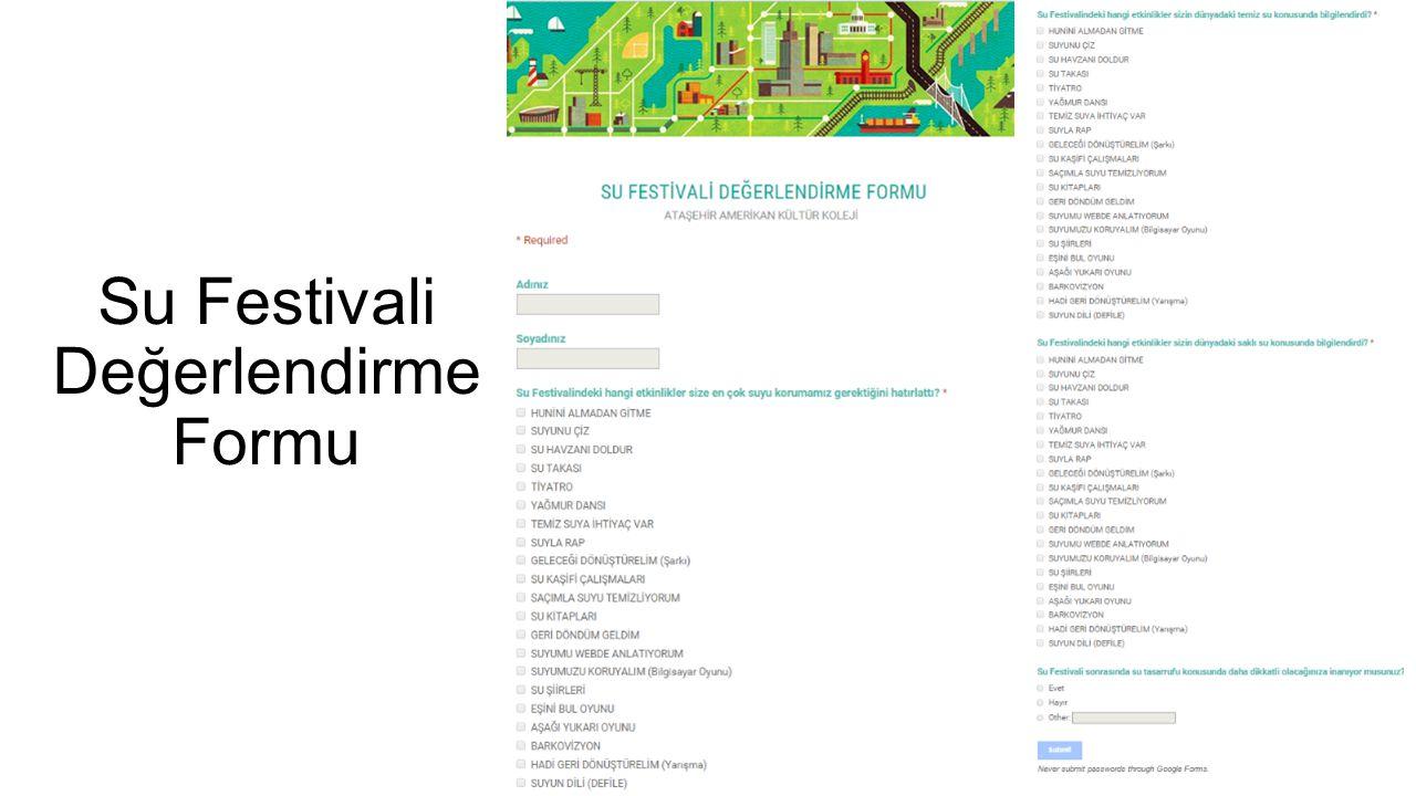 Su Festivali Değerlendirme Formu