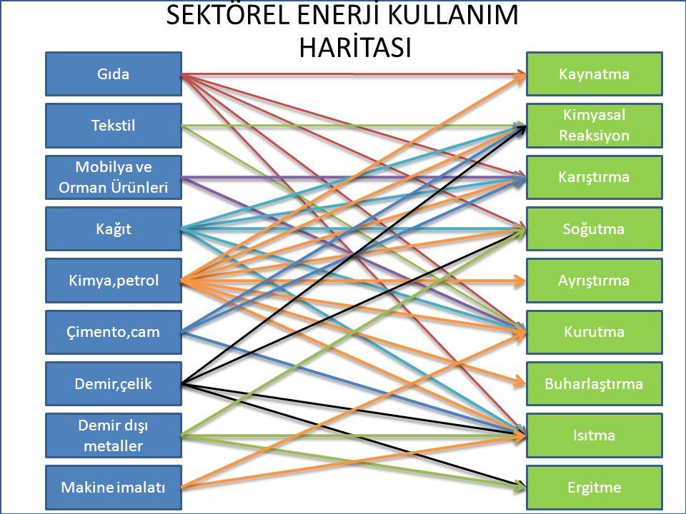 SEKTÖREL ENERJİ KULLANIM HARİTASI