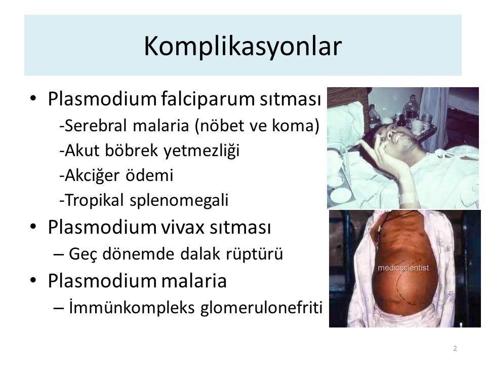 Komplikasyonlar Plasmodium falciparum sıtması Plasmodium vivax sıtması