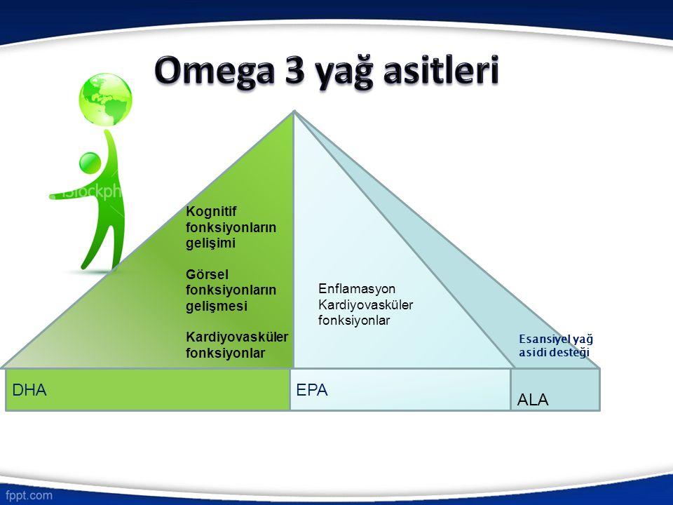 Omega 3 yağ asitleri E DHA EPA ALA