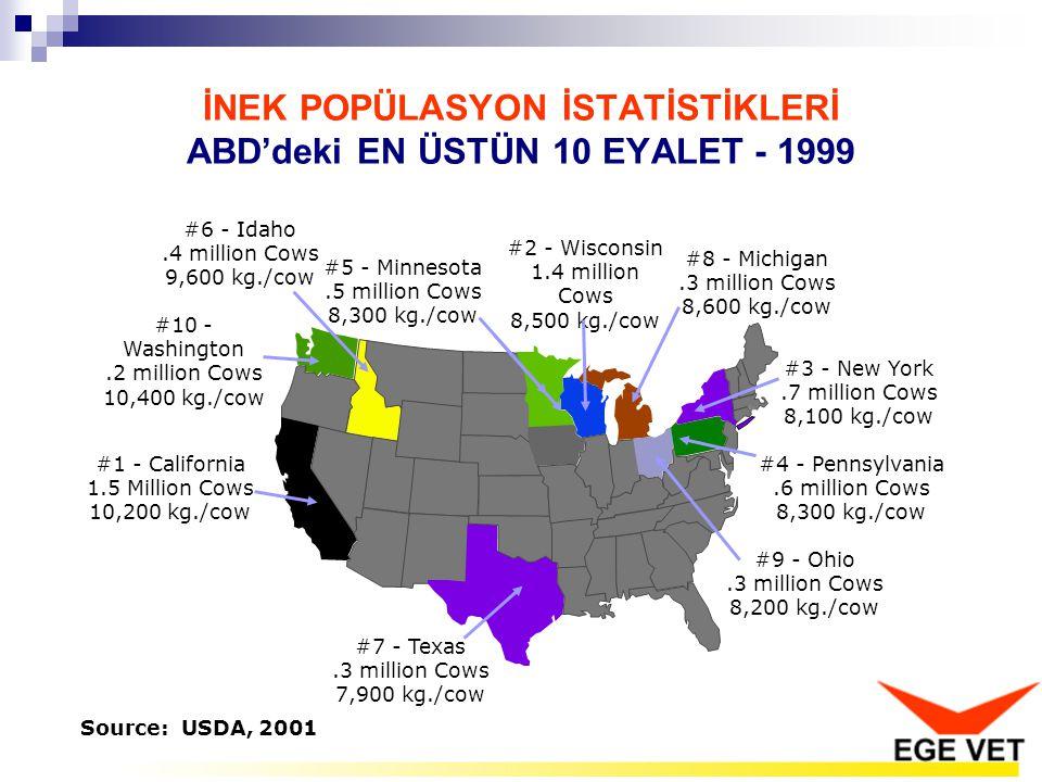 İNEK POPÜLASYON İSTATİSTİKLERİ ABD'deki EN ÜSTÜN 10 EYALET - 1999