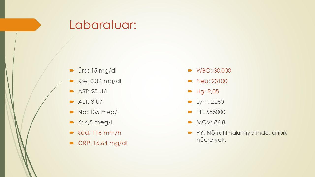 Labaratuar: Üre: 15 mg/dl WBC: 30.000 Kre: 0,32 mg/dl Neu: 23100