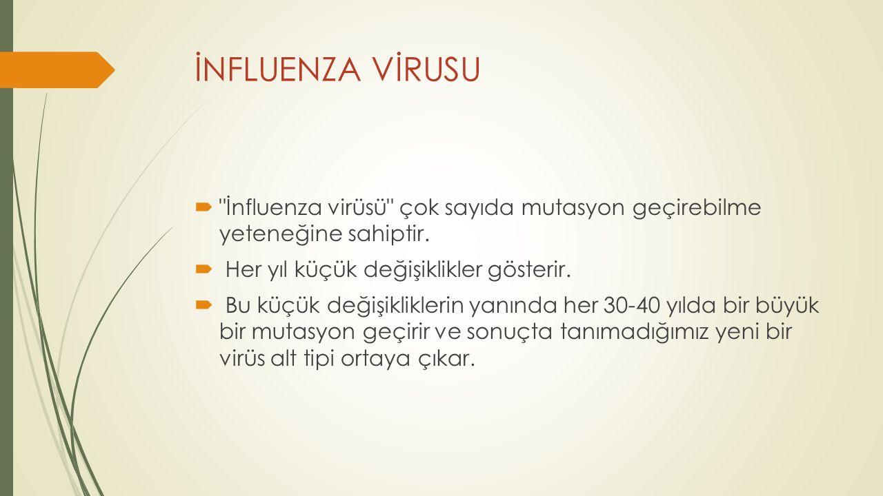 İNFLUENZA VİRUSU İnfluenza virüsü çok sayıda mutasyon geçirebilme yeteneğine sahiptir. Her yıl küçük değişiklikler gösterir.