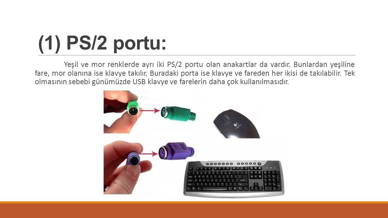 (1) PS/2 portu: