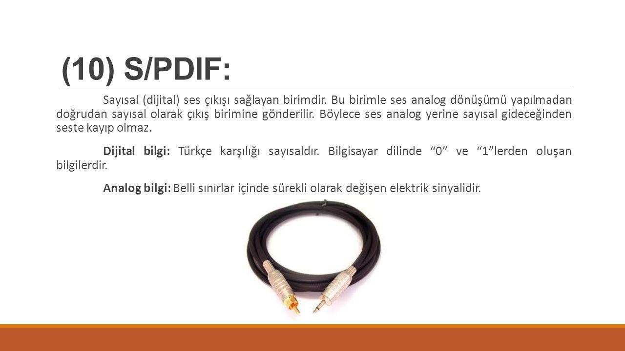 (10) S/PDIF: