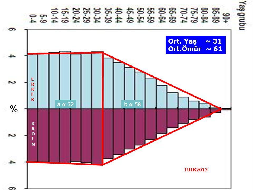 Ort. Yaş ~ 31 Ort.Ömür ~ 61 ERKEK % a ≈ 32 b ≈ 58 KADIN TUIK2013