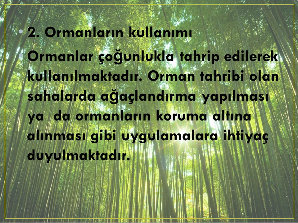 2. Ormanların kullanımı