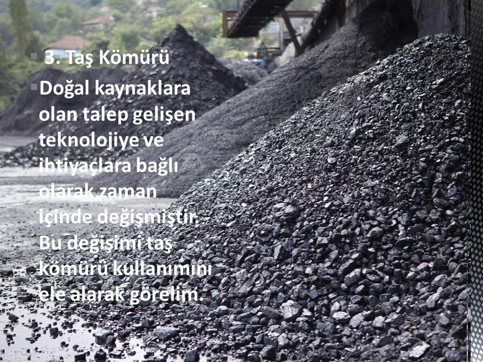 3. Taş Kömürü