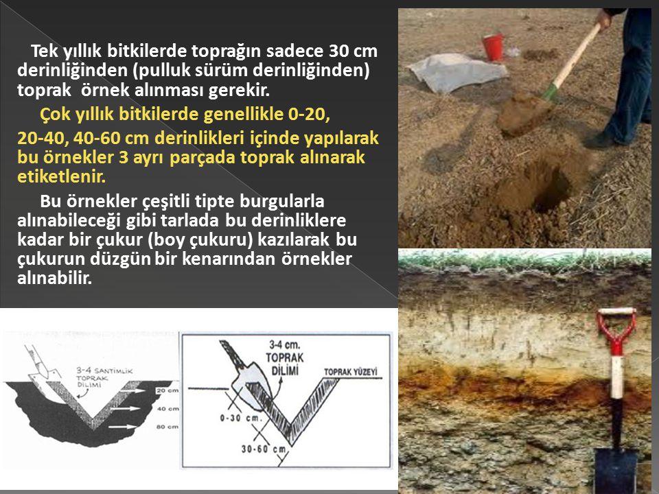 Tek yıllık bitkilerde toprağın sadece 30 cm derinliğinden (pulluk sürüm derinliğinden) toprak örnek alınması gerekir.