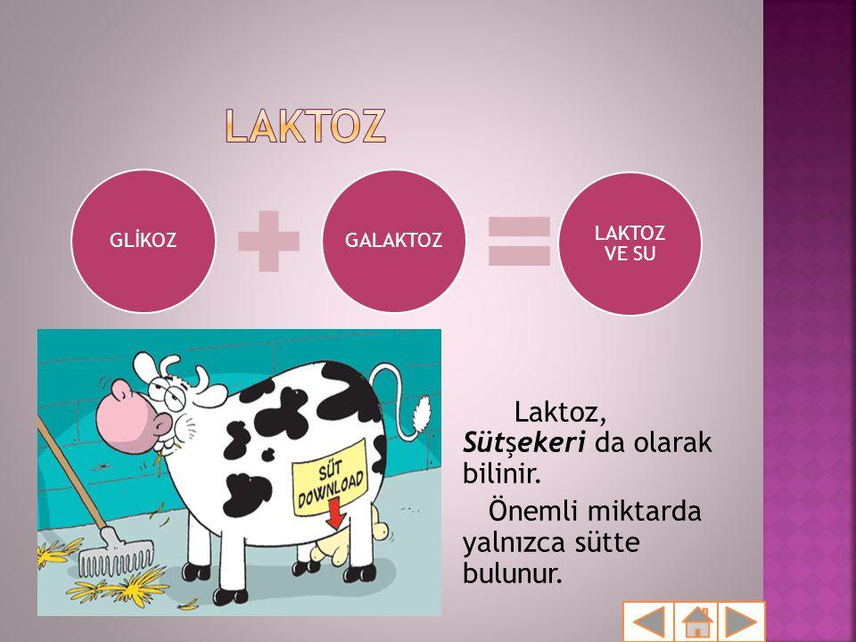 LAKTOZ Laktoz, Sütşekeri da olarak bilinir.
