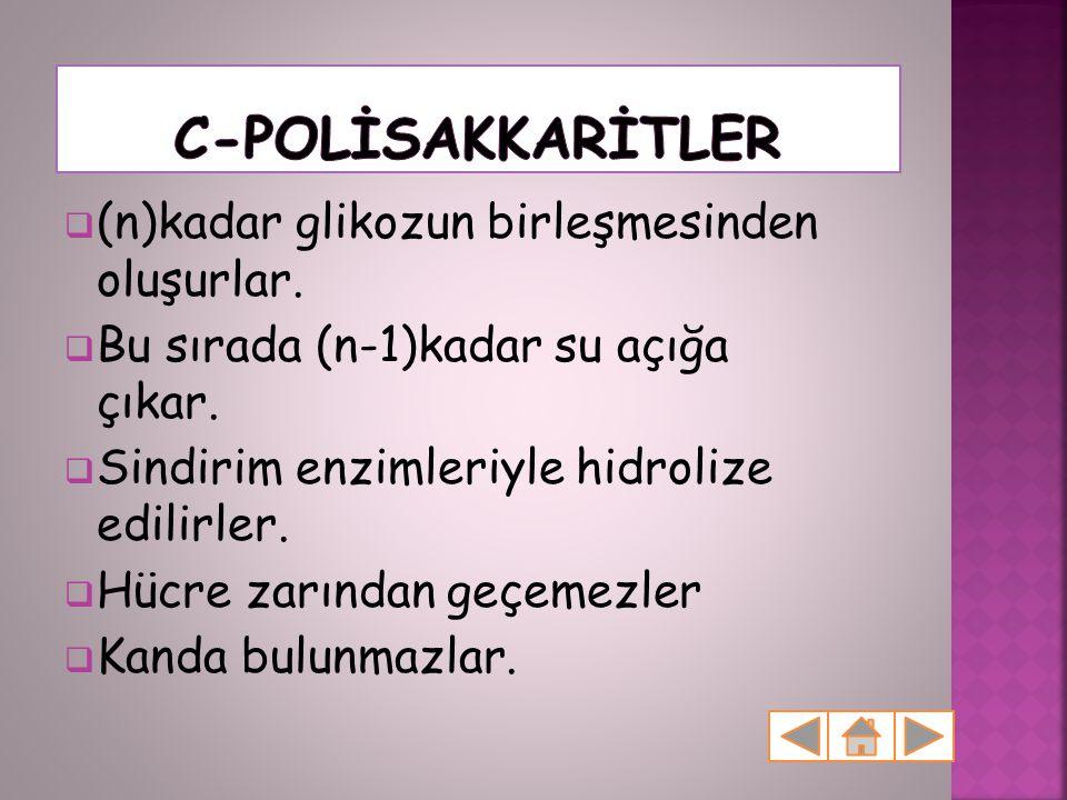 C-POLİSAKKARİTLER (n)kadar glikozun birleşmesinden oluşurlar.