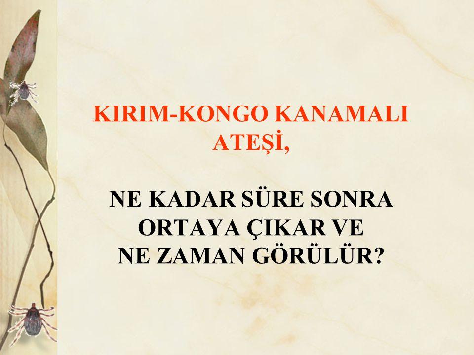 KIRIM-KONGO KANAMALI ATEŞİ, NE KADAR SÜRE SONRA ORTAYA ÇIKAR VE NE ZAMAN GÖRÜLÜR