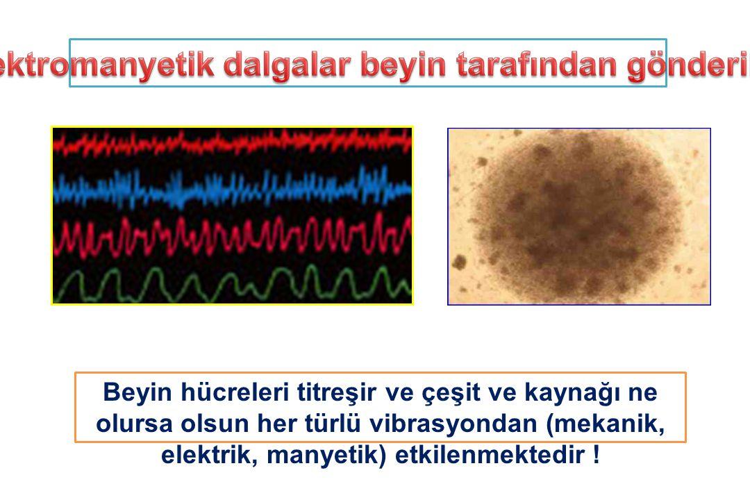 Elektromanyetik dalgalar beyin tarafından gönderilir
