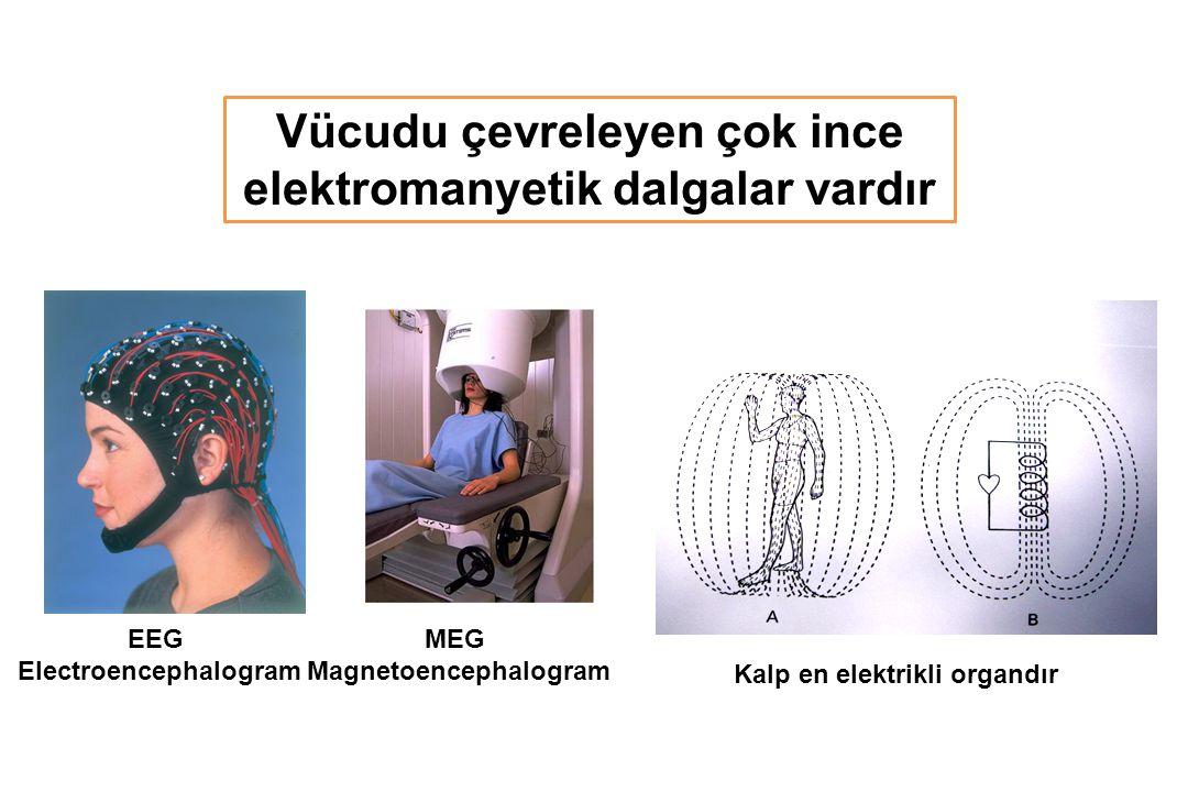 Vücudu çevreleyen çok ince elektromanyetik dalgalar vardır