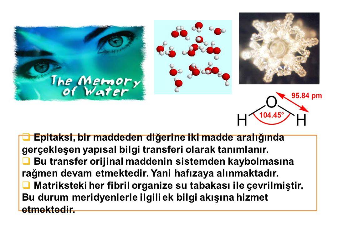 Epitaksi, bir maddeden diğerine iki madde aralığında gerçekleşen yapısal bilgi transferi olarak tanımlanır.