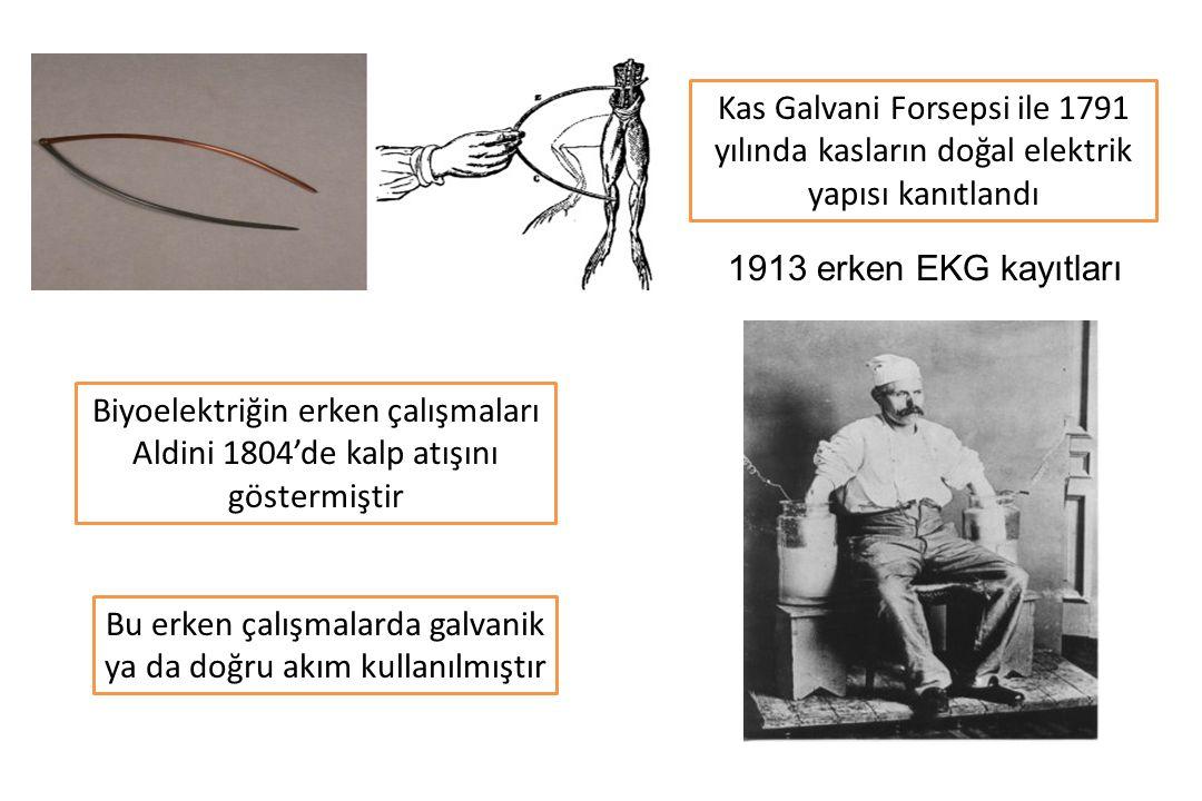 Biyoelektriğin erken çalışmaları