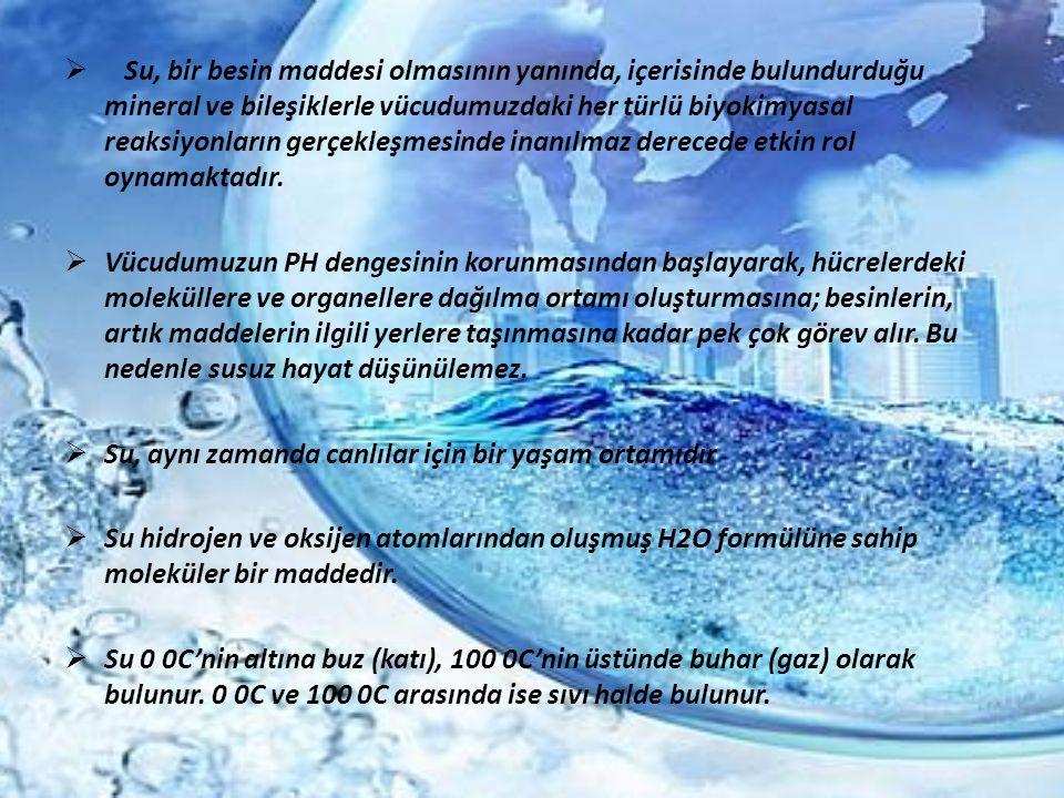 Su, bir besin maddesi olmasının yanında, içerisinde bulundurduğu mineral ve bileşiklerle vücudumuzdaki her türlü biyokimyasal reaksiyonların gerçekleşmesinde inanılmaz derecede etkin rol oynamaktadır.