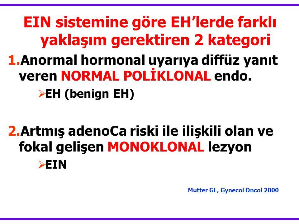 EIN sistemine göre EH'lerde farklı yaklaşım gerektiren 2 kategori