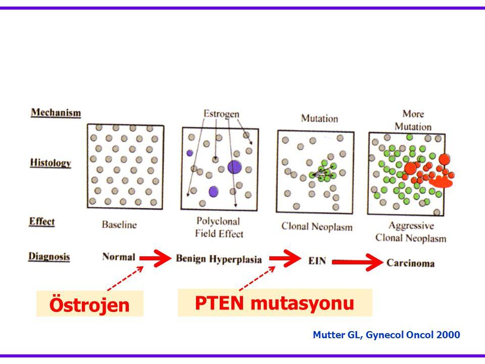 Östrojen PTEN mutasyonu