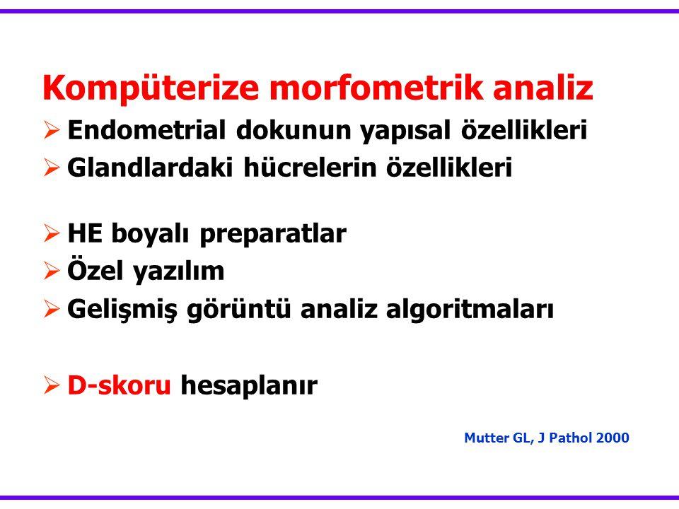 Kompüterize morfometrik analiz