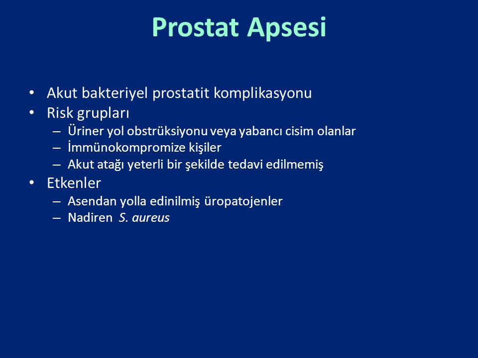 Prostat Apsesi Akut bakteriyel prostatit komplikasyonu Risk grupları