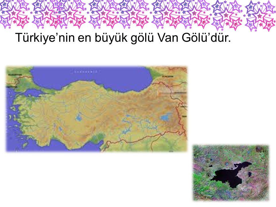 Türkiye'nin en büyük gölü Van Gölü'dür.