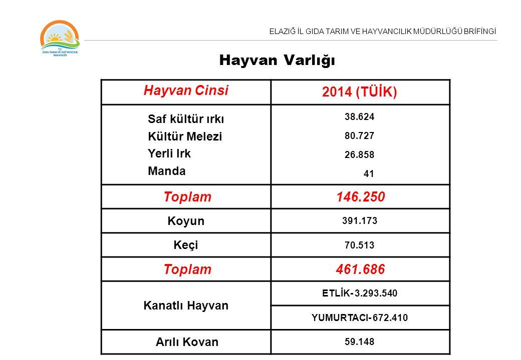 Hayvan Varlığı Hayvan Cinsi 2014 (TÜİK) Toplam 146.250 461.686