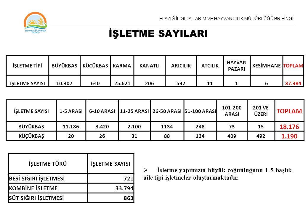 İŞLETME SAYILARI TOPLAM 18.176 1.190 İŞLETME TÜRÜ İŞLETME SAYISI