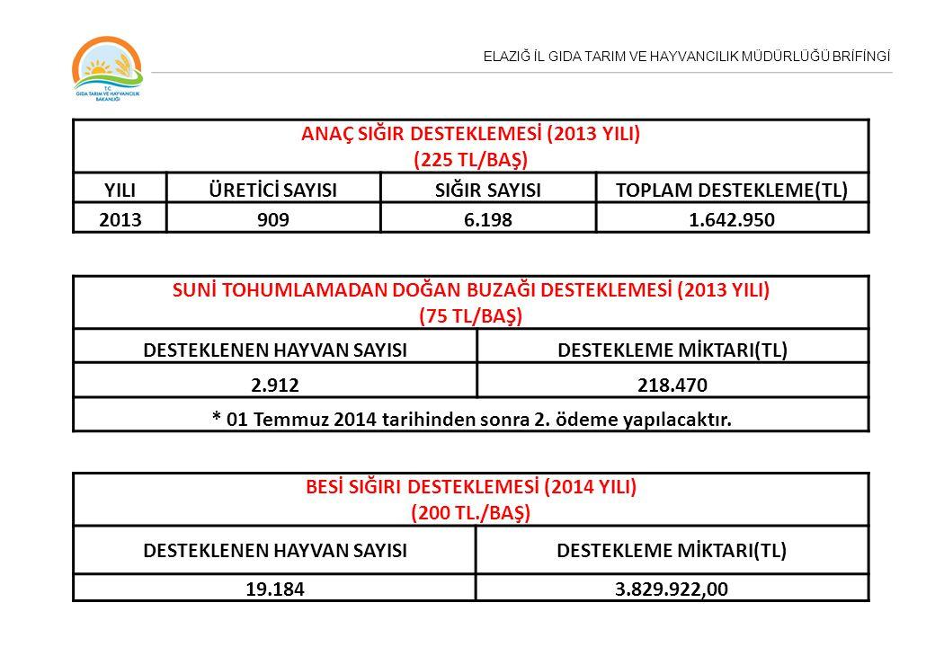 ANAÇ SIĞIR DESTEKLEMESİ (2013 YILI) (225 TL/BAŞ) YILI ÜRETİCİ SAYISI