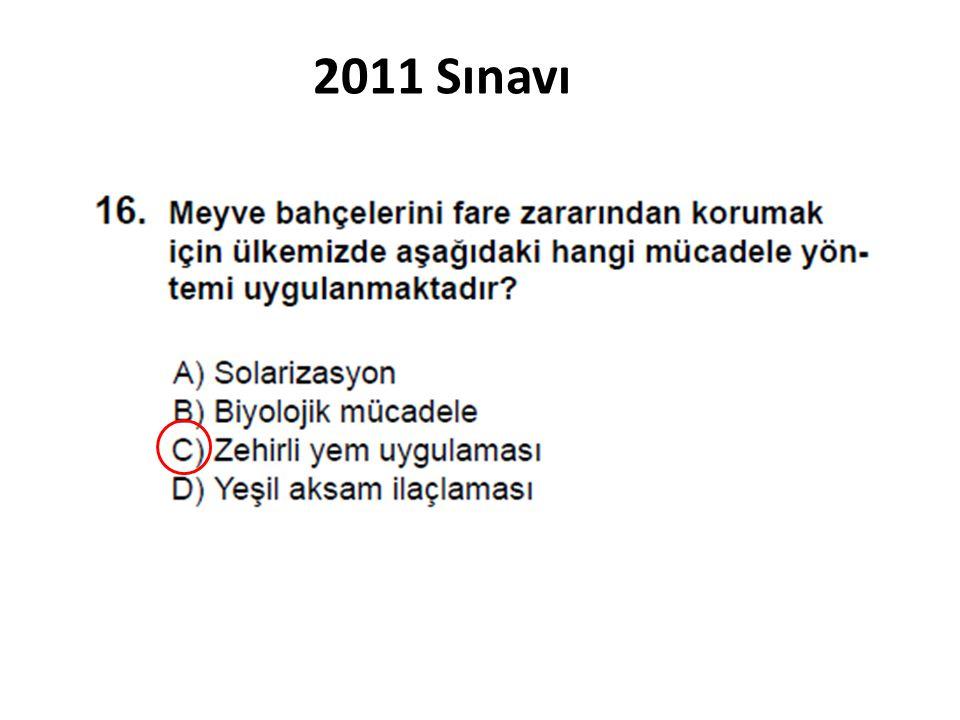2011 Sınavı