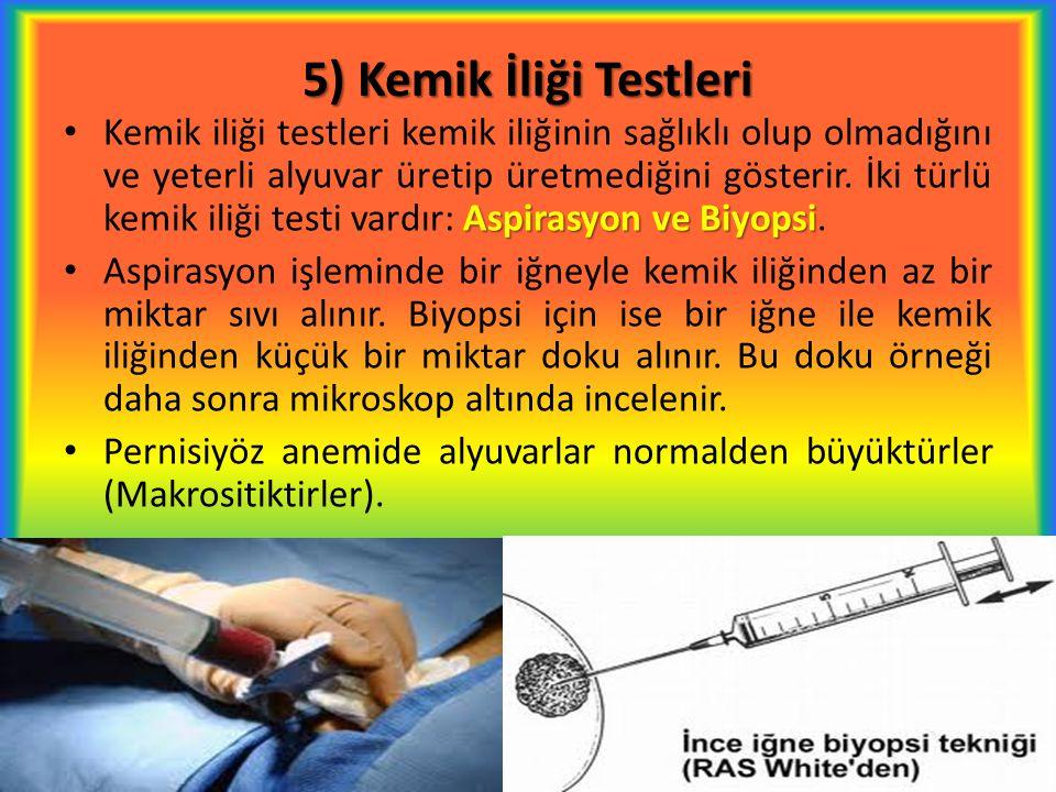 5) Kemik İliği Testleri